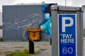 608_Fences_Christchurch